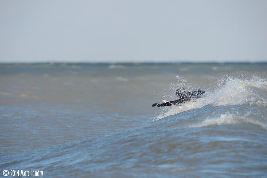MLandry_SURF-140221-01184